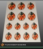 Ladybirds-set 3-D